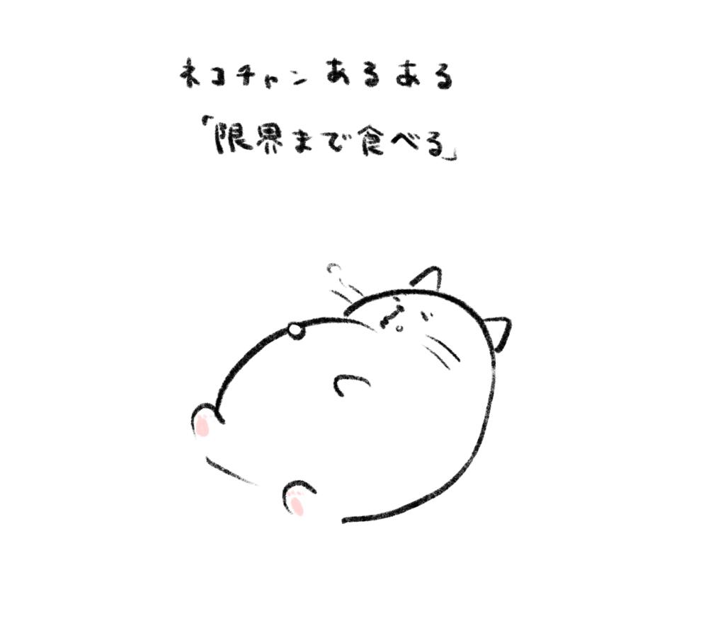 full cat