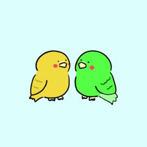 friend bird